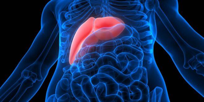 اعراض نشاط فيروس الكبد بي