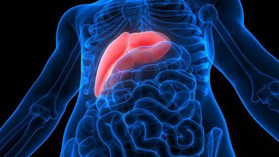 اعراض تليف الكبد المتاخره